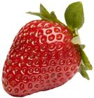 Picture of NEW SEASON STRAWBERRY PUNNET 250g